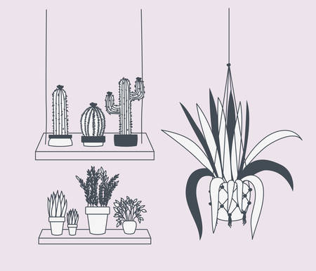 houseplants in macrame hangers and swing vector illustration design Ilustrace