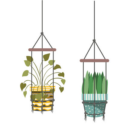 houseplants on macrame hangers icon vector illustration design  イラスト・ベクター素材