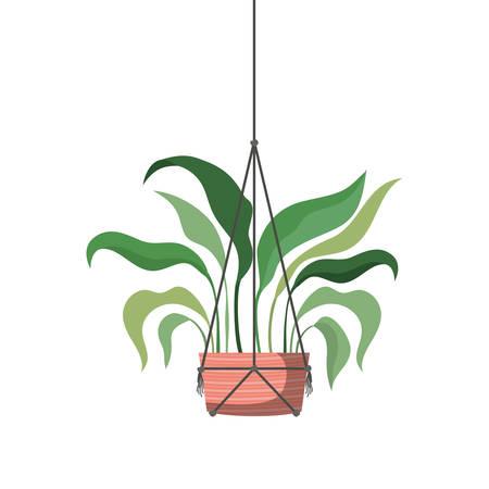 Zimmerpflanze auf Makramee Kleiderbügel Symbol Vektor Illustration Design vector