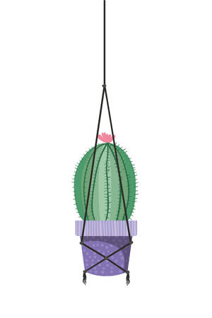cactus on macrame hangers isolated icon vector illustration design Imagens - 122850596