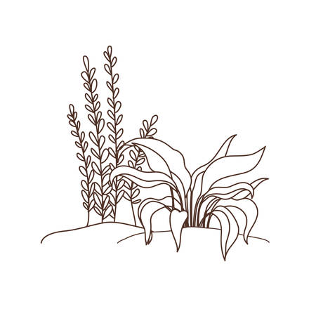 plant in landscape isolated icon vector illustration design Ilustrace