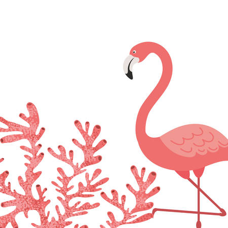 pink flamingo isolated icon vector illustration design 向量圖像