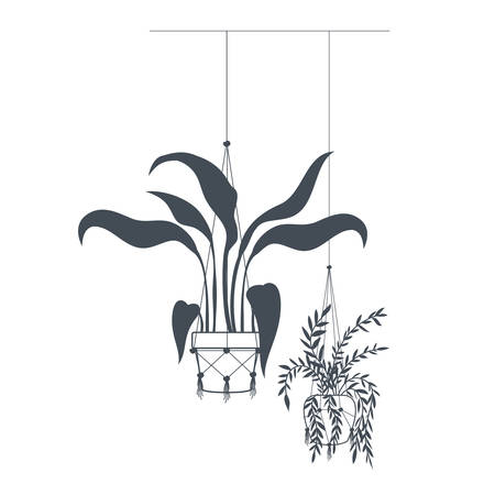 houseplants on macrame hangers icon vector illustration design Banco de Imagens - 121760389