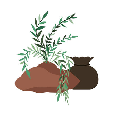tree to plant isolated icon vector illustration design