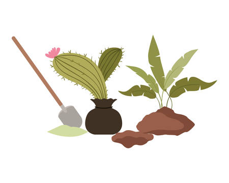 cactus and tree to plant isolated icon vector illustration design 向量圖像