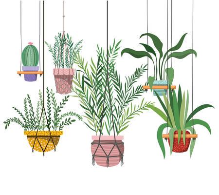 houseplants on macrame hangers icon vector illustration design Illustration