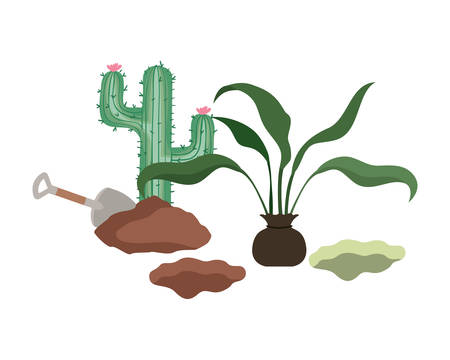 cactus and tree to plant isolated icon vector illustration design Иллюстрация
