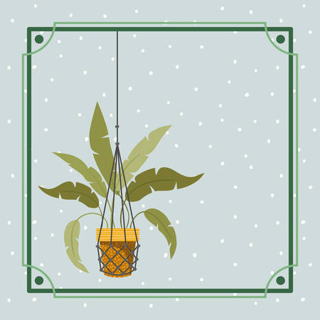 frame with houseplant hanging in macrame vector illustration design  イラスト・ベクター素材