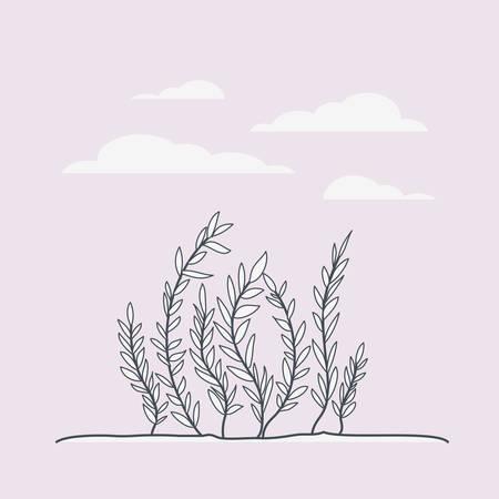 algae marine plants scene vector illustration design
