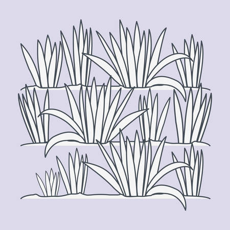 marine plants ecosystem scene vector illustration design Stock Vector - 122607774