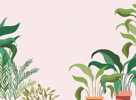 beautiful houseplants in pots garden scene vector illustration design