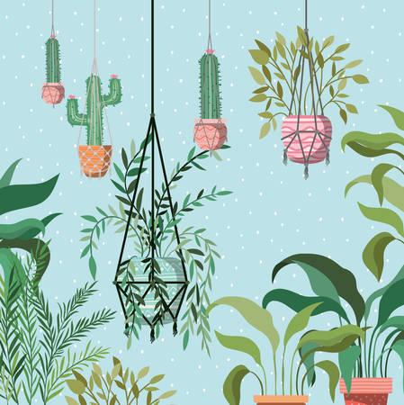 houseplants in macrame hangers garden scene vector illustration design Illustration