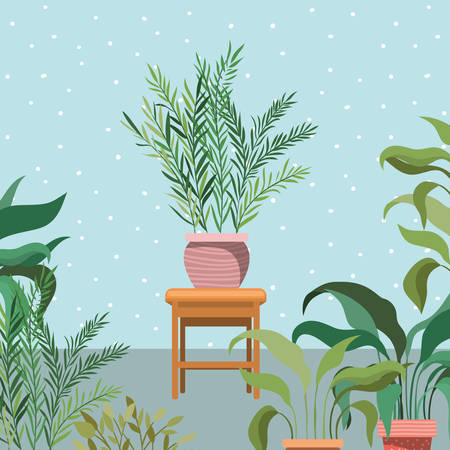 houseplants in wooden chair garden scene vector illustration design Vetores