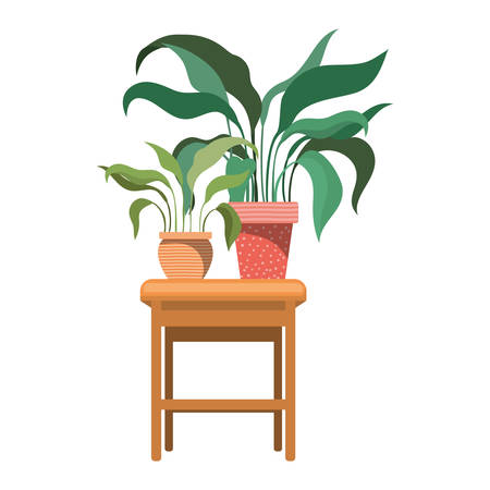 houseplants with potted on the table vector illustration design
