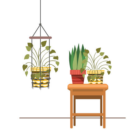 houseplants on macrame hangers and table vector illustration design