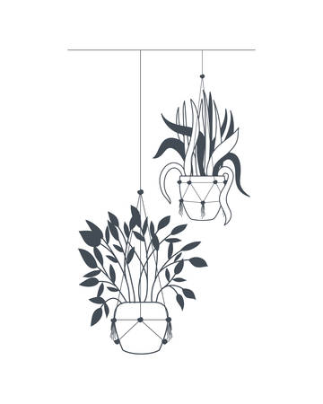 houseplants on macrame hangers icon vector illustration design Çizim