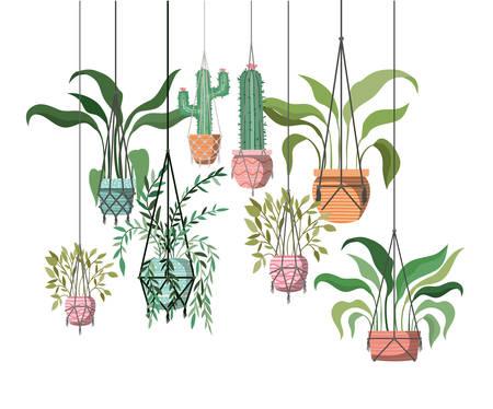 houseplants on macrame hangers icon vector illustration design