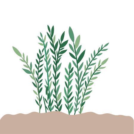 plant in landscape isolated icon vector illustration design Ilustracja
