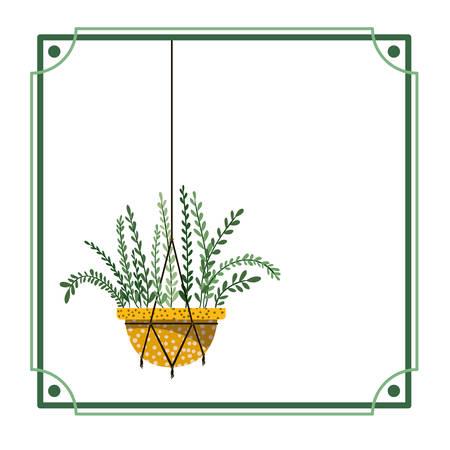 frame with houseplant on macrame hangers vector illustration design