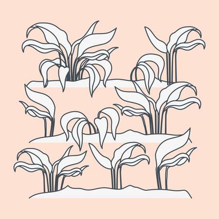 marine plants ecosystem scene vector illustration design Stock Vector - 123533581