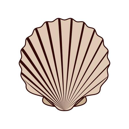 cute seashell on the sea in white background vector illustration design