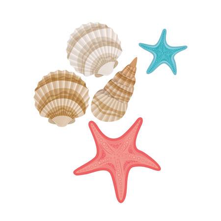 cute seashells on the sea in white background vector illustration design