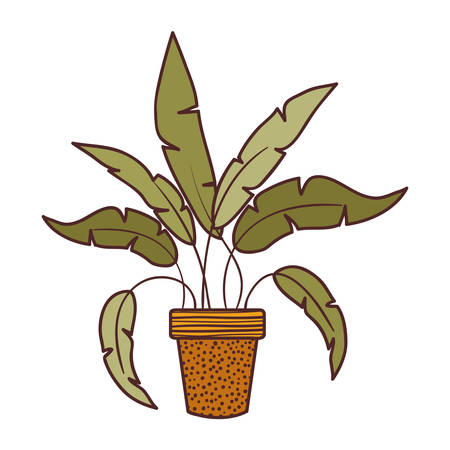 houseplant with potted isolated icon vector illustration design