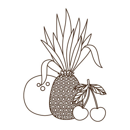 delicious tropical fruits of summer on white background vector illustration design