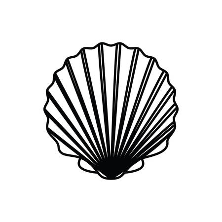 cute seashell on the sea in white background vector illustration design Illustration