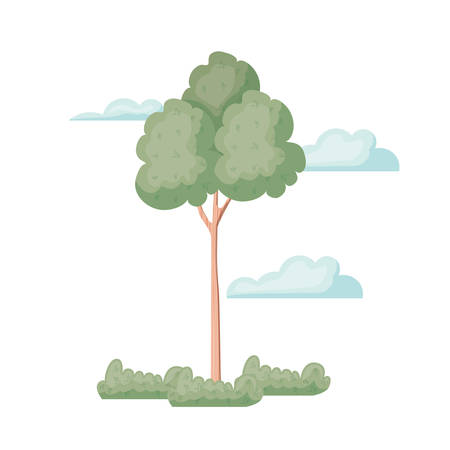 landscape with trees and plants isolated icon vector illustration design