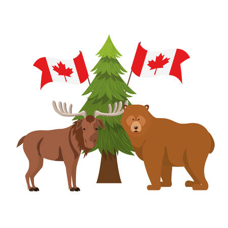 Bear and moose animal design, forest canada life nature and fauna theme Vector illustration