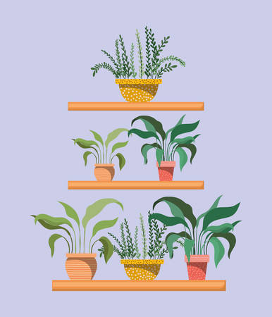 set of houseplants in shelfs vector illustration design Ilustracja