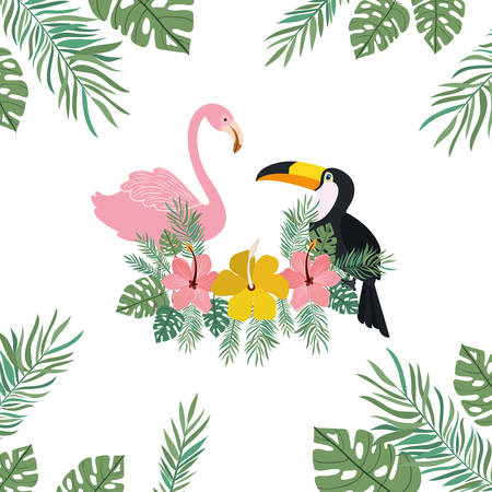 pattern of tucan and flemish with summer flowers vector illustration design