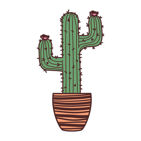 cactus with potted isolated icon vector illustration design 일러스트