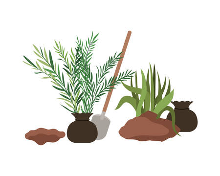 trees to plant isolated icon vector illustration design