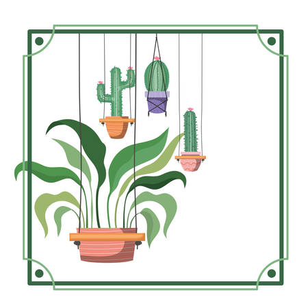 frame with houseplants on macrame hangers vector illustration design