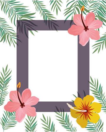 frame with flower and leaves of summer vector illustration design