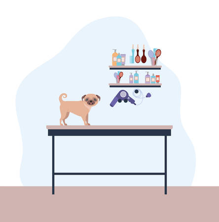 cute dog pug care salon scene vector illustration design Stock Illustratie