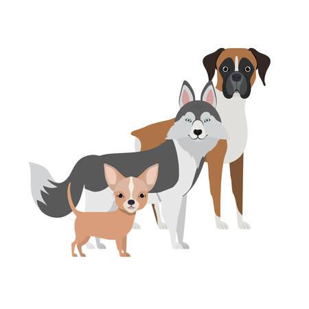 set of adorable dogs on white background vector illustration design 일러스트
