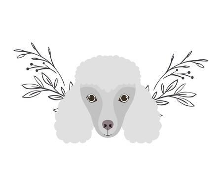 head of cute poodler dog on white background vector illustration design Archivio Fotografico - 129040344