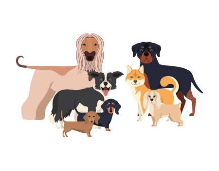 set of adorable dogs on white background vector illustration design Stock Illustratie