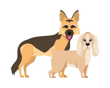 cute and adorable dogs on white background vector illustration design Stock Illustratie