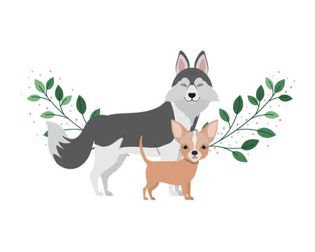 cute and adorable dogs on white background vector illustration design  イラスト・ベクター素材