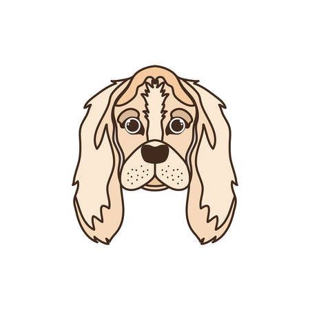 head of cute cocker spaniel ingles dog on white vector illustration design