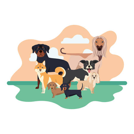 set of adorable dogs on white background vector illustration design Stock Illustratie