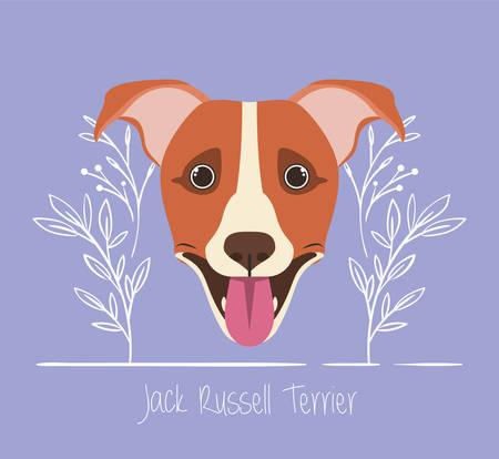 cute jack russell terrier dog pet head character vector illustration design Archivio Fotografico - 129071599