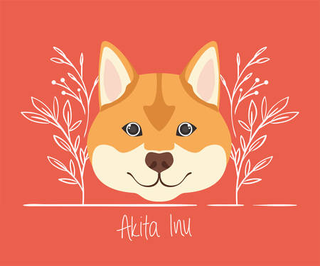 cute akita inu dog pet head character vector illustration design Archivio Fotografico - 129109312