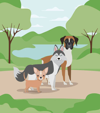 group of dogs pets in the camp characters vector illustration design Stock Vector - 129109305