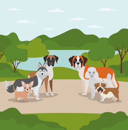 group of dogs pets in the camp characters vector illustration design Illustration