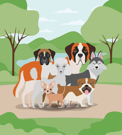 group of dogs pets in the camp characters vector illustration design Stock Vector - 129109453
